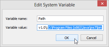 Windows 8 Edit System Variable