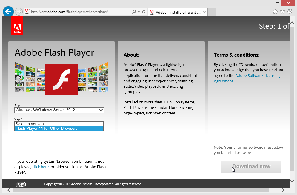 adobe flash player 8
