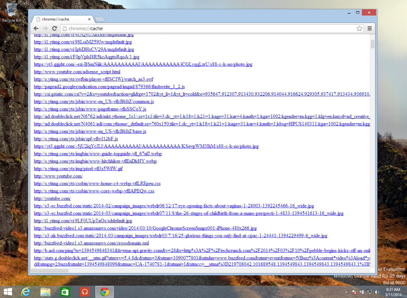 Viewing Google Chrome Cache