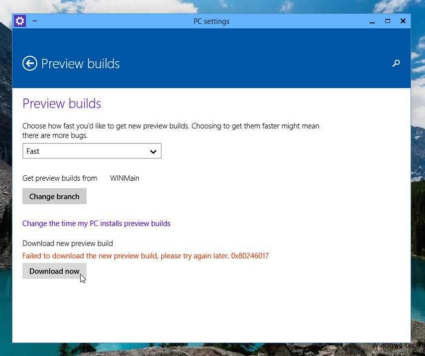 Failed to download the new preview build, please try again later.  0x80246017