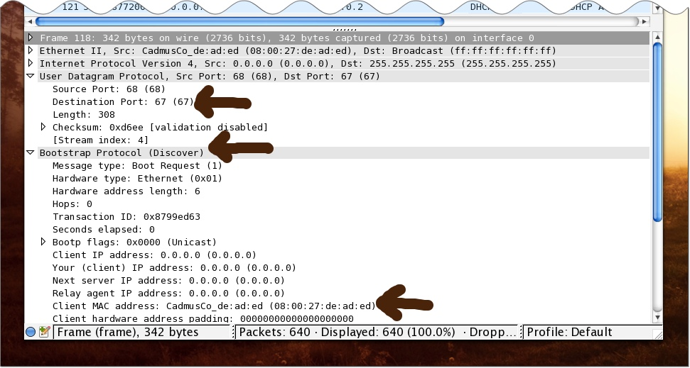 DHCP Discover at Layer 4