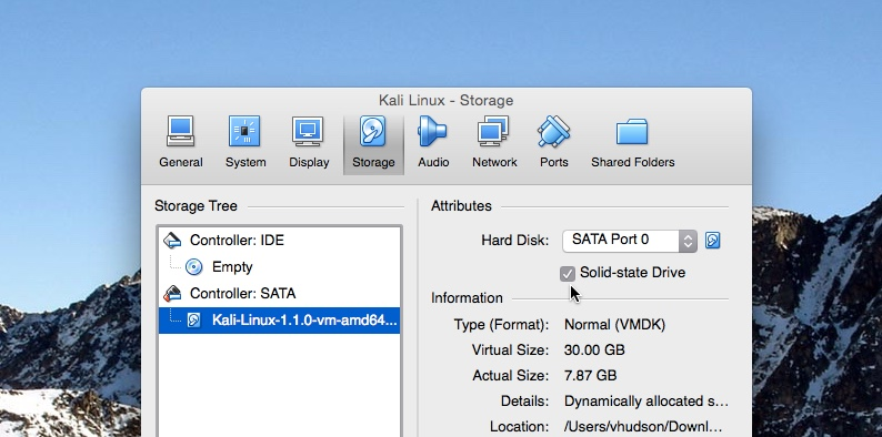 Using a Virtual Solid state drive with Kali Linux