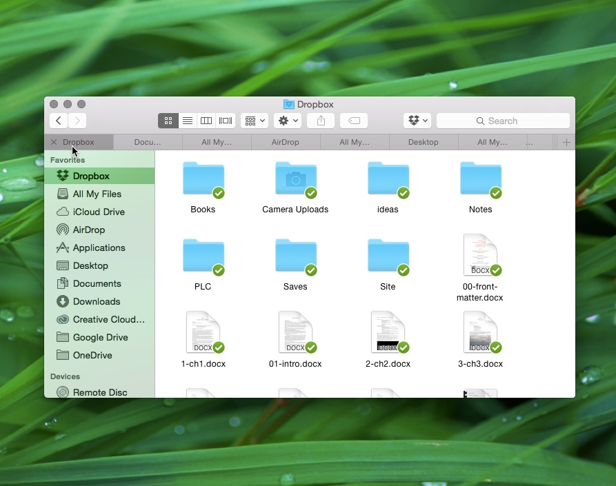 Mac OS X merged windows