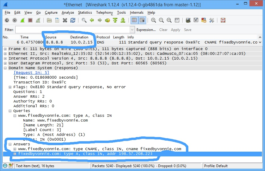 Looking at DNS in WireShark