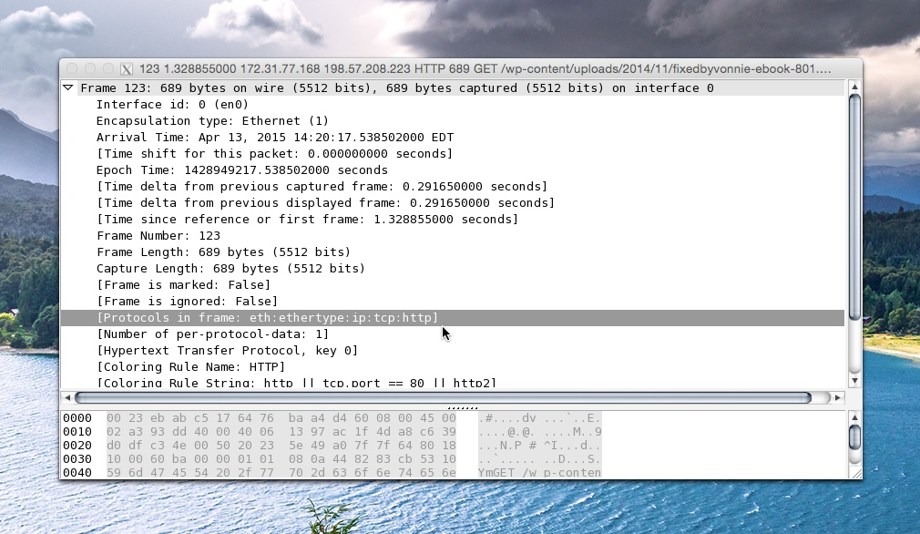 Examining the Physical Layer in WireShark