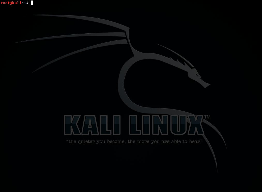 Kali Terminal Window