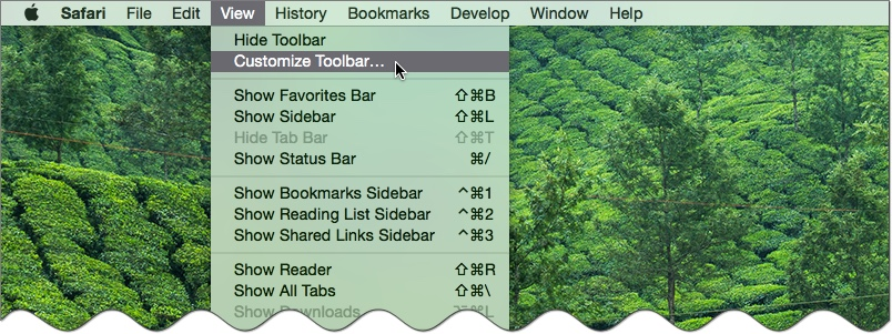 Customize Safari Toolbar