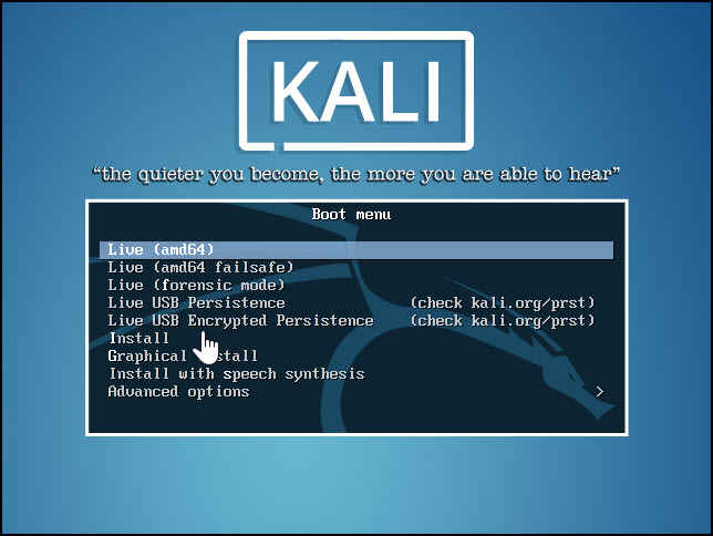 Kali Live CD screen